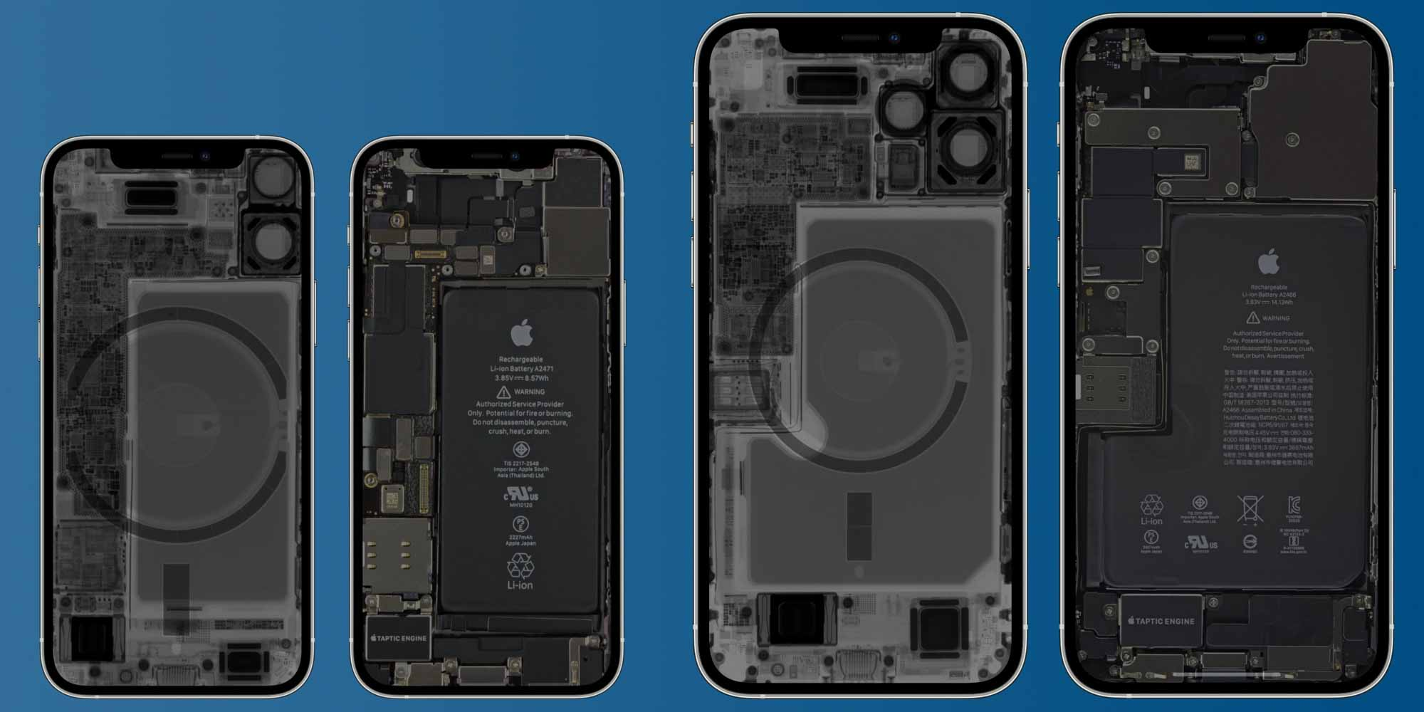 Внутренние рентгеновские обои iPhone 12 mini Pro Max